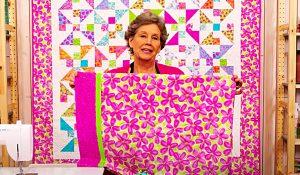 Pinwheel Frolic Pillowcase With Jenny Doan