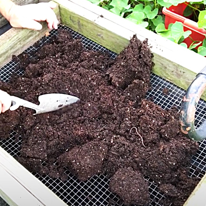 Easy Way To Reuse Potting Soil - How To Make Soil Rich Again - Growing Food At Home
