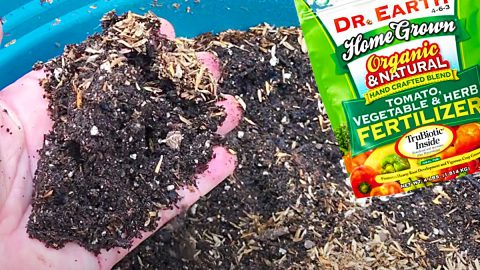 How To Revive Old Potting Soil | DIY Joy Projects and Crafts Ideas