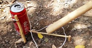How To Make A Bird Trap From Coke Cans