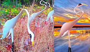 How To Make A Garden Egret With PVC Pipe