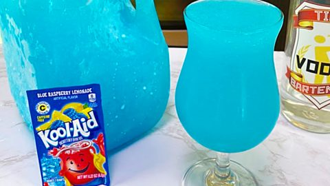 Lake Day Kool-Aid Punch Recipe | DIY Joy Projects and Crafts Ideas