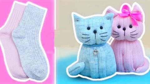 How To Make A Sock Kitty   DIY Joy Projects and Crafts Ideas
