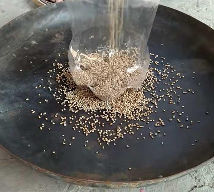 Fill DIY Bird Feeder WIth Food - Bird Feeder
