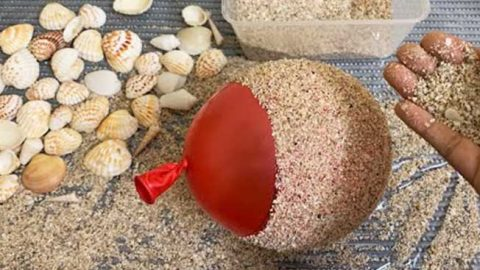 DIY Flower Vase Made From Seashells | DIY Joy Projects and Crafts Ideas