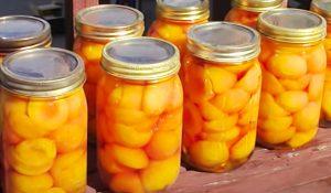 Canned Peaches Recipe