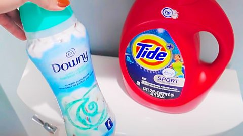 Clean A Toilet Tank With Detergent And Fabric Softener   DIY Joy Projects and Crafts Ideas