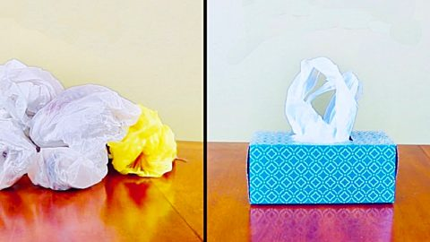 Easy Way To Store Plastic Bags | DIY Joy Projects and Crafts Ideas