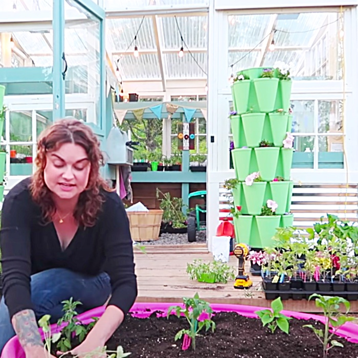 Gardening For Apartment Dwellers - Easy Ways To Grow Food In An Urban Area - How To Grow Food