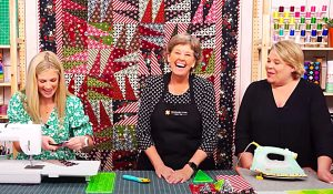 Triple Play Wing Quilt With Jenny Doan