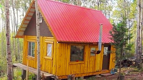 How To Build An Off-The-Grid Cabin   DIY Joy Projects and Crafts Ideas