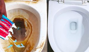 How To Clean A Toilet Using Toothpaste