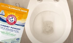 Clean A Toilet With Laundry Detergent