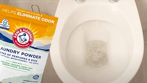 Clean A Toilet With Laundry Detergent   DIY Joy Projects and Crafts Ideas